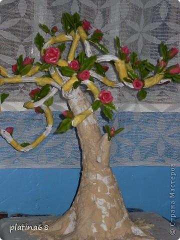 Дерево из роз. фото 4