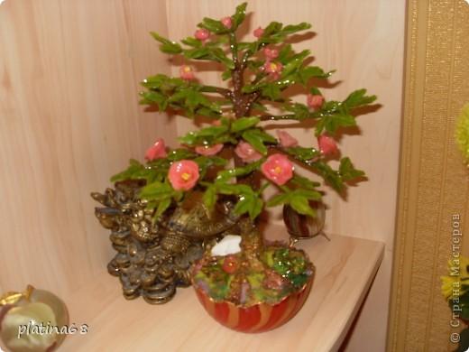 Дерево из роз. фото 6