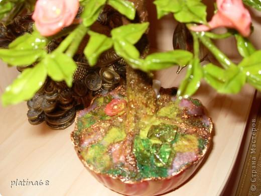 Дерево из роз. фото 7