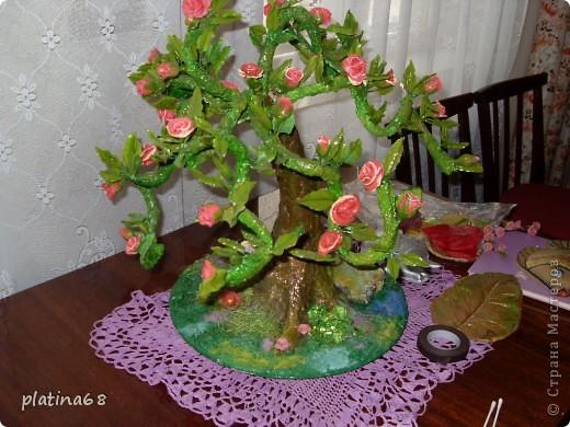 Дерево из роз. фото 1