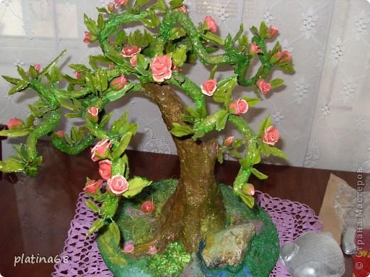 Дерево из роз. фото 2