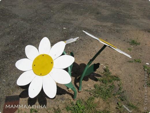 Теперь они у меня будут и зимой и летом цвести! фото 2