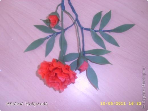 """Решилась выложить свои цветы из """"Холодного фарфора"""". фото 1"""