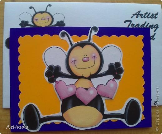 Новая серия!Пчелки!!!! Право первого выбора у Пчелки Жужи! )))) фото 4