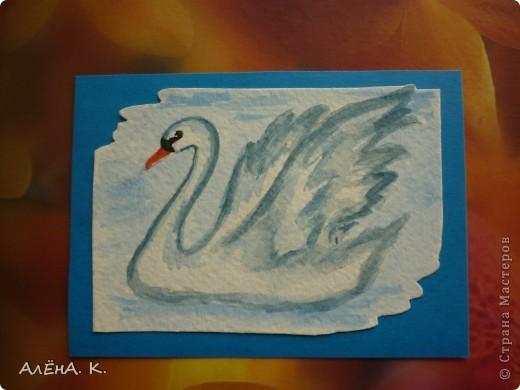 Во всем мире лебеди признаны самыми красивыми птицами. Каждый взмах крыльев, любое движение наполнены грацией и изяществом. Этим прекрасным созданиям посвящена моя новая серия АТС-акварелек) За мной долг для bibka. фото 4