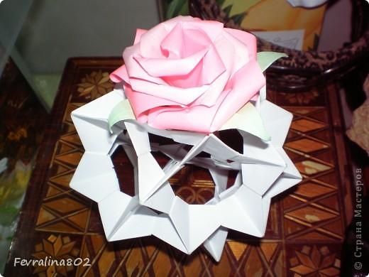 Электра в розах фото 4
