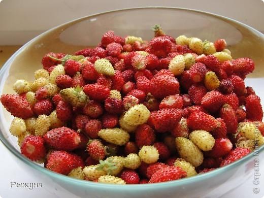 Живет у меня в саду земляника - красная и белая (желтая). Дает урожай до морозов, что позволяет всей семье лакомиться витаминами долгое время. Жаль компьютер не может ягодный аромат передавать... А теперь давай те посмотрим поближе фото 6