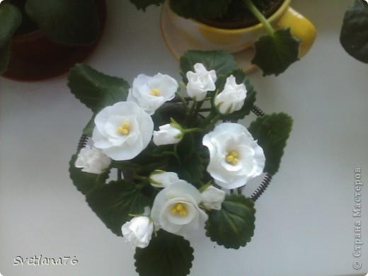 Цветы лепила из массы ХФ, который лежал месяца 1,5 в холодильнике. И масса была очень даже ничего, лепилась даже лучше чем недавно приготовленная.  фото 1