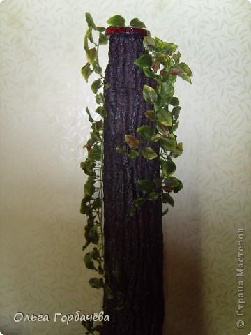 Мне бы фотостудию!!Никак не смогла сфоткать высокое деревце из свежей коры,с загнувшимися краями.Спил внизу--подставка,и сбоку спил- подставка.Большая кора на стволе...Грибы-трутовики.ВОТ ТАКАЯ КОНСТРУКЦИЯ,Тяжёлая,я вам скажу. фото 2