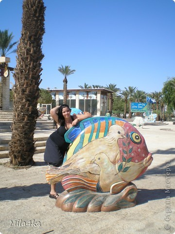 Думала я думала и решила, что хочу всех познакомить с таким замечательным курортным городом как Эйлат (Крайняя южная точка Израиля).. Это место очень особенное.. И ощущения просто незабываемые.. Итак начнем путешествие.. фото 17