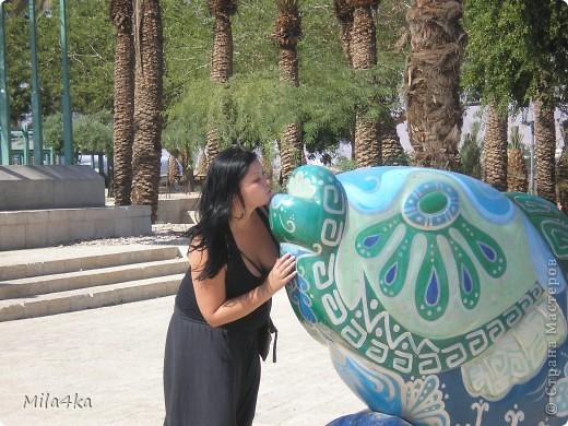 Думала я думала и решила, что хочу всех познакомить с таким замечательным курортным городом как Эйлат (Крайняя южная точка Израиля).. Это место очень особенное.. И ощущения просто незабываемые.. Итак начнем путешествие.. фото 20