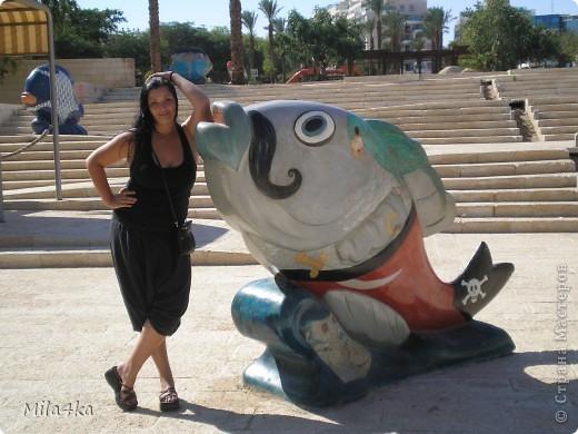 Думала я думала и решила, что хочу всех познакомить с таким замечательным курортным городом как Эйлат (Крайняя южная точка Израиля).. Это место очень особенное.. И ощущения просто незабываемые.. Итак начнем путешествие.. фото 24