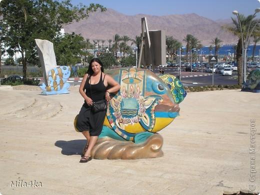 Думала я думала и решила, что хочу всех познакомить с таким замечательным курортным городом как Эйлат (Крайняя южная точка Израиля).. Это место очень особенное.. И ощущения просто незабываемые.. Итак начнем путешествие.. фото 26