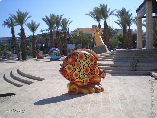 Думала я думала и решила, что хочу всех познакомить с таким замечательным курортным городом как Эйлат (Крайняя южная точка Израиля).. Это место очень особенное.. И ощущения просто незабываемые.. Итак начнем путешествие.. фото 21
