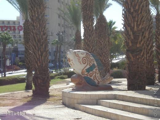 Думала я думала и решила, что хочу всех познакомить с таким замечательным курортным городом как Эйлат (Крайняя южная точка Израиля).. Это место очень особенное.. И ощущения просто незабываемые.. Итак начнем путешествие.. фото 25