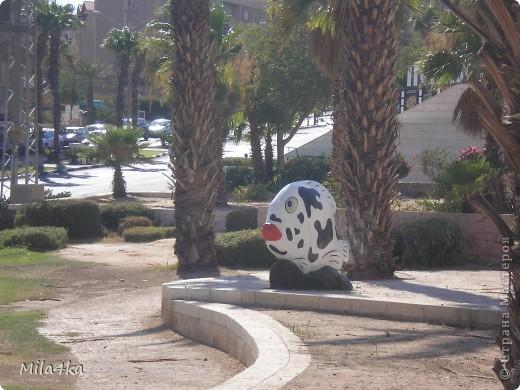 Думала я думала и решила, что хочу всех познакомить с таким замечательным курортным городом как Эйлат (Крайняя южная точка Израиля).. Это место очень особенное.. И ощущения просто незабываемые.. Итак начнем путешествие.. фото 27