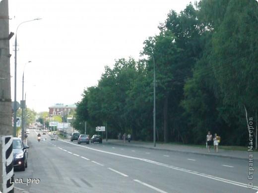 Прогулки, Москва, Ботанический сад, ВДНХ фото 3