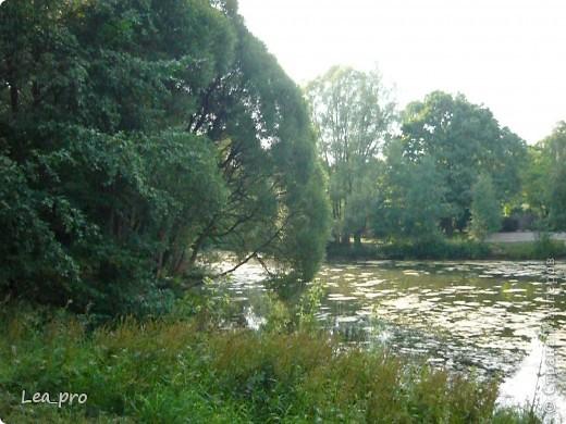 Прогулки, Москва, Ботанический сад, ВДНХ фото 11