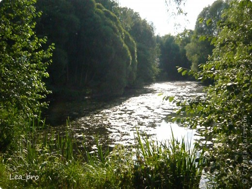Прогулки, Москва, Ботанический сад, ВДНХ фото 1