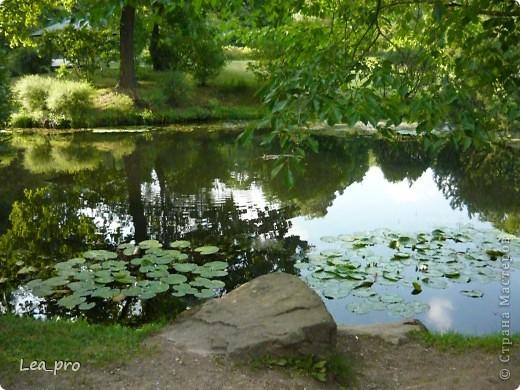 Прогулки, Москва, Ботанический сад, ВДНХ фото 19