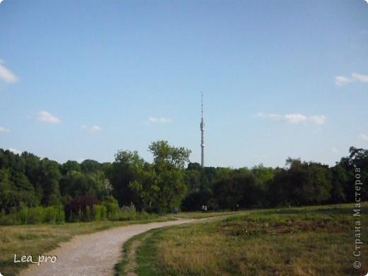 Прогулки, Москва, Ботанический сад, ВДНХ фото 39