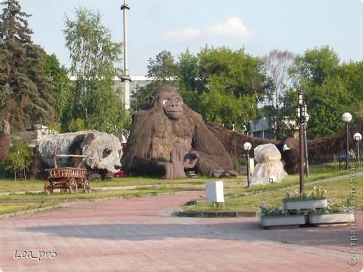 Прогулки, Москва, Ботанический сад, ВДНХ фото 52
