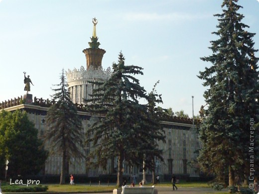 Прогулки, Москва, Ботанический сад, ВДНХ фото 61