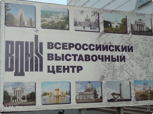 Прогулки, Москва, Ботанический сад, ВДНХ фото 62