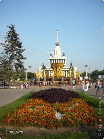 Прогулки, Москва, Ботанический сад, ВДНХ фото 63
