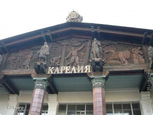 Прогулки, Москва, Ботанический сад, ВДНХ фото 64