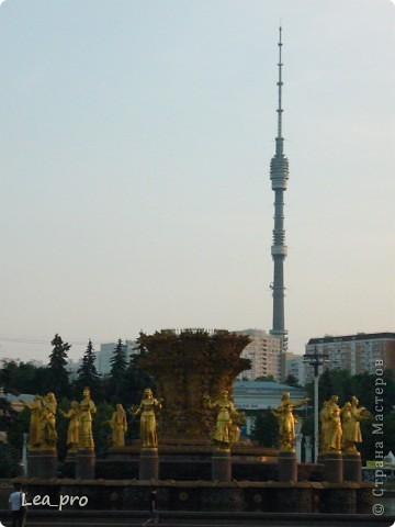 Прогулки, Москва, Ботанический сад, ВДНХ фото 67
