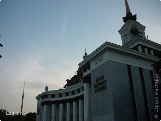 Прогулки, Москва, Ботанический сад, ВДНХ фото 66
