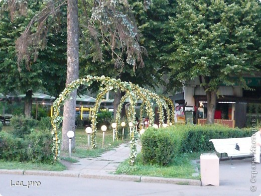 Прогулки, Москва, Ботанический сад, ВДНХ фото 69