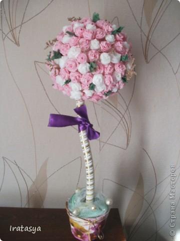 розовое деревцо фото 1