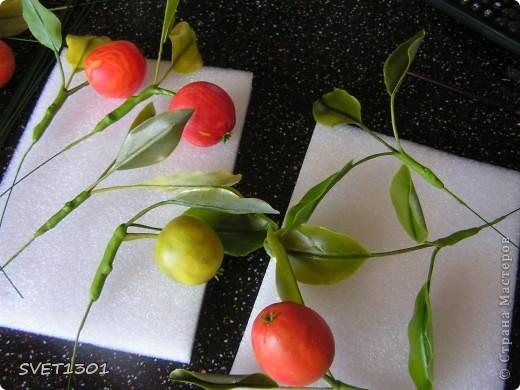 И так продолжим! Если вы не ленились и выполнили  домашнее задание, то сначала займёмся подготовкой листиков. У яблони обратная сторона листьев белёсая , следовательно её необходимо закрасить белой краской. Берём на кисть ОЧЕНЬ маленькое количество краски и растушёвываем по листику (лишнее можно стереть салфеткой) фото 8