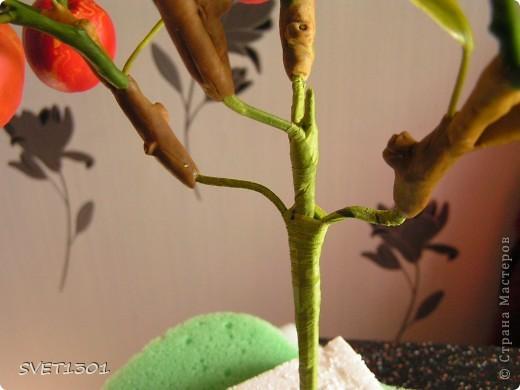 И так продолжим! Если вы не ленились и выполнили  домашнее задание, то сначала займёмся подготовкой листиков. У яблони обратная сторона листьев белёсая , следовательно её необходимо закрасить белой краской. Берём на кисть ОЧЕНЬ маленькое количество краски и растушёвываем по листику (лишнее можно стереть салфеткой) фото 18