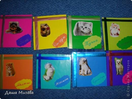 Питомцы. Но 4 карточки заняты: ЖАСМИН выброла мама, МАЛЫШ выбрал папа, ТУЧКА выброла сестра, КОНФЕТКА выброла бабушка.