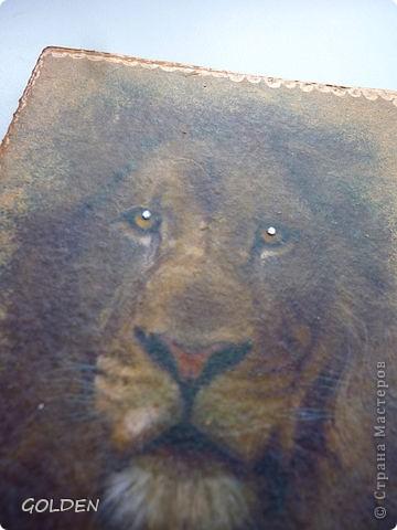 Обложки дл паспортов. фото 10