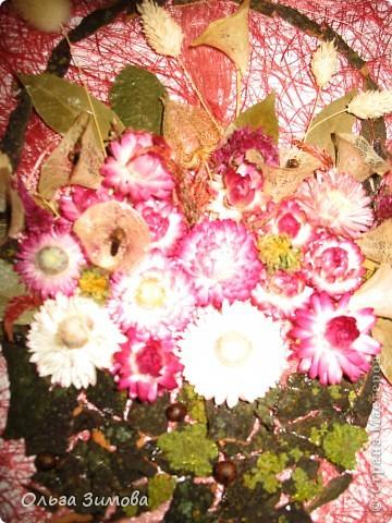 Если  есть в запасе сухоцветы всегда можно быстро сделать оригинальный подарок. Небольшое панно с цветами всегда будет приятно получить женщине. фото 3