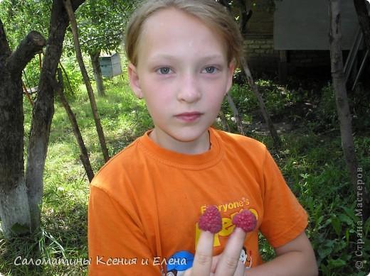 """Вот такая малинка растет в нашем саду """"Черная малина""""    мы ее так называем, а на самом деле это сорт черноплодной малины кумберленд,  можно про нее почитать по этой ссылке. http://www.fazenda-online.ru/garden/136-chernaya-malina.html фото 12"""