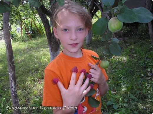 """Вот такая малинка растет в нашем саду """"Черная малина""""    мы ее так называем, а на самом деле это сорт черноплодной малины кумберленд,  можно про нее почитать по этой ссылке. http://www.fazenda-online.ru/garden/136-chernaya-malina.html фото 13"""