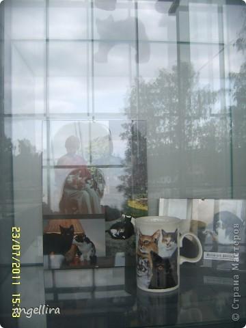 """Сегодня и завтра у нас в городе проходит Международная выставка кошек """"Jelgavas kaķis 2011"""". В которой принимает участие более чем 300 котов, которые являются лучшими представителями своей породы и проделали путь в Елгаву из Литвы, Эстонии, Финляндии, Франции, Чехии, Нидерландов, Швейцарии, Германии, Польши, России, Белоруссии и Латвии. фото 38"""