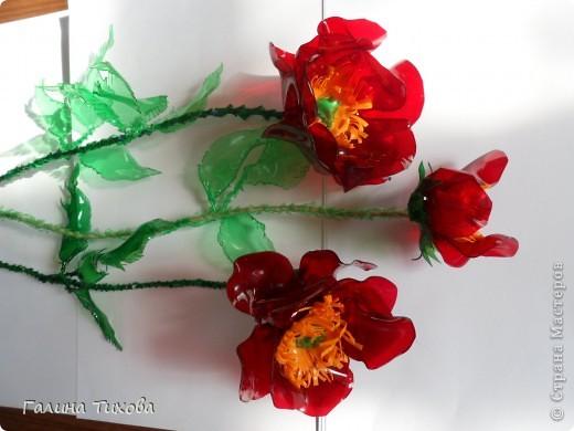 Эти маки сделаны из обычных пластиковых бутылок.  Мастер-класс: http://masterica.maxiwebsite.ru/archives/6084#more-6084 фото 27