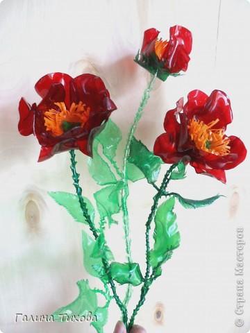 Эти маки сделаны из обычных пластиковых бутылок.  Мастер-класс: http://masterica.maxiwebsite.ru/archives/6084#more-6084 фото 28