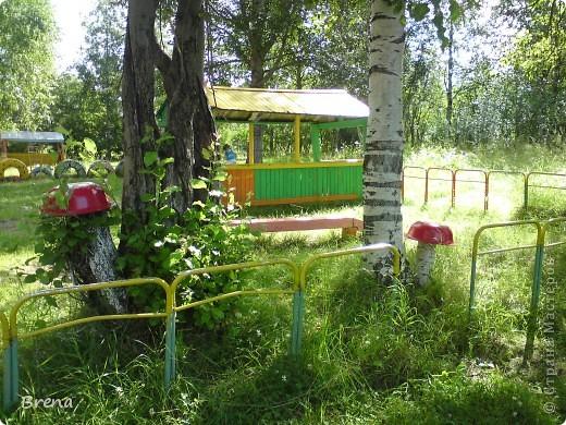 Просто хочу поделиться оформлением наших участков и оформлением клумб вокруг садика. Идеи не мои и сделаны даже не мною (я в отпуске была) Может быть кому то и пригодится ))) фото 10