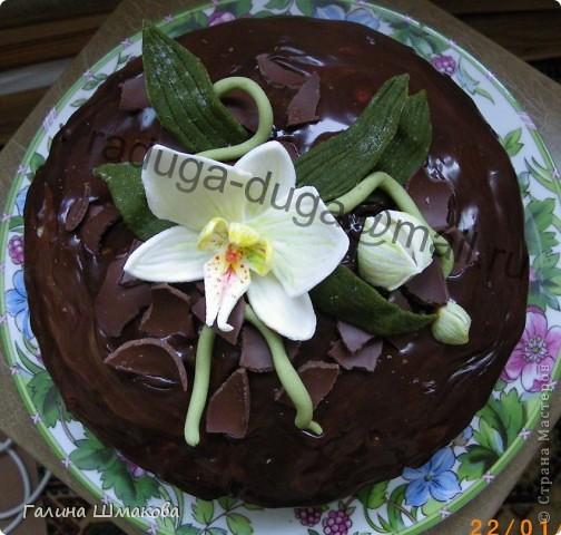 """Сынуле на день рождения...мой первый """"особый"""" тортик фото 6"""