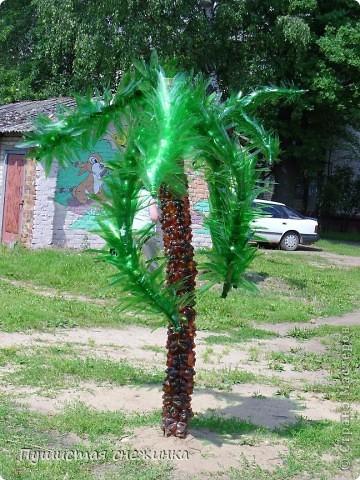 Пальма из пластиковых бутылок - как