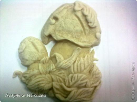 повторюшка солонушка лесная полянка фото 2