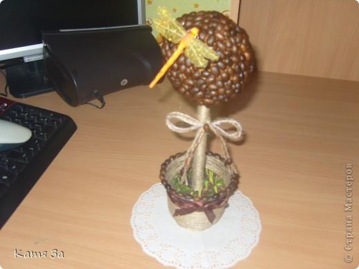 Вот такое кофейное дерево я сделала сестре на день рождения.  фото 2
