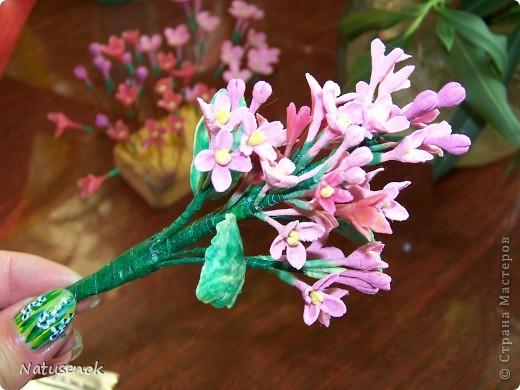 ну что ж, вот они мои первые робкие шаги в освоении холодного фарфора. Конечно скромные цветочки не идут ни в какое сравнение с работами наших мастериц, но я все таки решила похвастаться (даже не стала плетенку лаком покрывать, вот как похвастаться захотелось моим разношерстным букетиком...)  фото 4